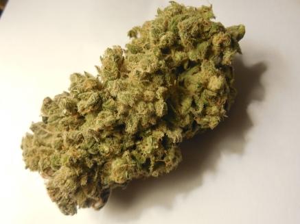 cannabis4